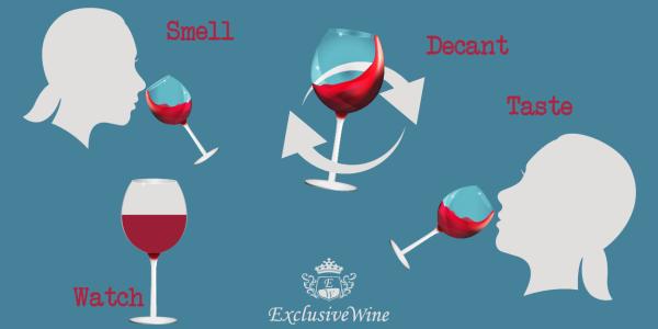 degustazione-vino-decantare-vini-aroma-colore-trasparenza-gusto-profumo-sentori-spezie-frutti-portale-ricerca-cantine-enoteche-exclusive-wine2