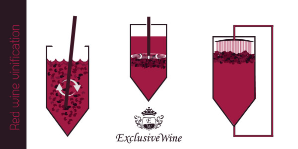 Red wine vinification by maceration