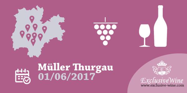 a-tutto-mu-ller-thurgau-giugno-2016-strada-del-vino-e-dei-sapori-del-trentino-alto-adige-eventi-exclusive-wine