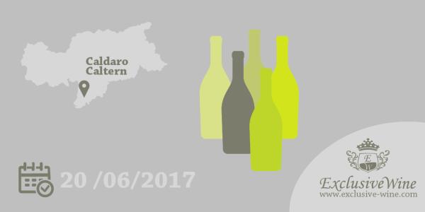 caldaro-in-abito-bianco-degustazione-vini-bianchi-eventi-alto-adige-exclusive-wine