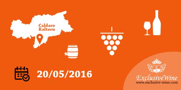 migliori-vini-di-caldaro-kalteresee-chrta-20-maggio-2016-eventi-exclusive-wine