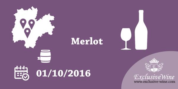 mondo-merlot-ottobre-2016-aldeno-trento-rovereto-trentino-eventi-exclusive-wine