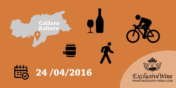 una-passeggiata-tra-atmosfera-e-gusto-caldaro-sulla-strada-del-vino-alto-adige-da-vivere-eventi-bolzano-e-dintorni-Exclusive-wine