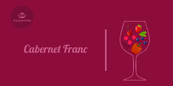 cabernet-franc-aromi-vini-aroma-vino-vitigni-internazionali-profumi-sensazioni-spezie-frutti-degustazione-exclusive-wine-1250x616