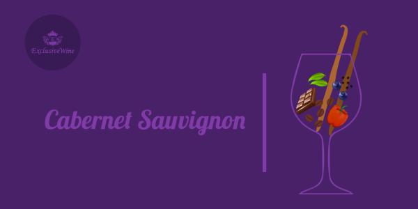 cabernet-sauvignon-aromi-vini-aroma-vino-vitigni-internazionali-profumi-sensazioni-spezie-frutti-degustazione-exclusive-wine-1250x616