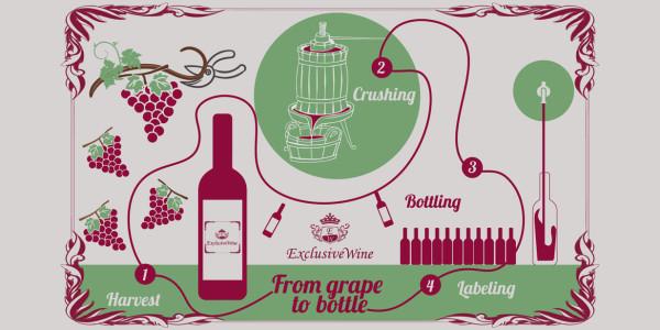come-fare-il-vino-procedimento-vendemmia-pigiatura-imbottigliamento-etichetta-distribuzione-portale-ricerca-cantine-enoteche-exclusive-wine-1250x616