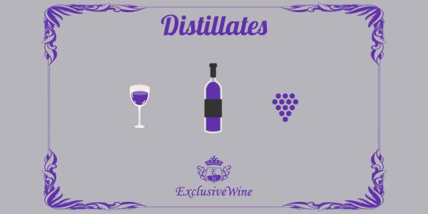grappe-distillato-acqua-vite-produzione-distillati-portale-ricerca-cantine-enoteche-exclusive-wine-1250x616