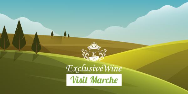 itinerari-marche-riviera-del-conero-ascoli-piceno-ancona-recanati-raffaello-sanzio-exclusive-wine-portale-ricerca-vini-cantine