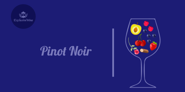 pinot-noir-aromi-vini-aroma-vino-vitigni-internazionali-profumi-sensazioni-spezie-frutti-degustazione-exclusive-wine-1250x616