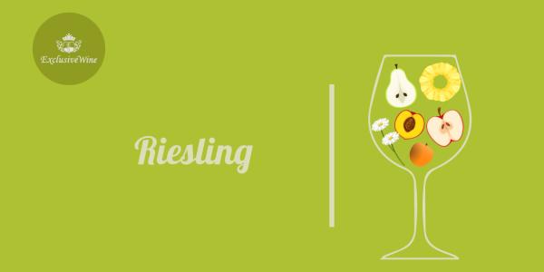 riesling-aromi-vini-aroma-vino-vitigni-internazionali-profumi-sensazioni-spezie-frutti-degustazione-exclusive-wine-1250x616