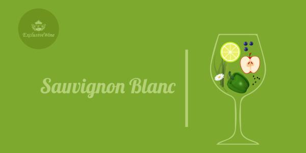 sauvignon-blanc-aromi-vini-aroma-vino-vitigni-internazionali-profumi-sensazioni-spezie-frutti-degustazione-exclusive-wine-1250x616