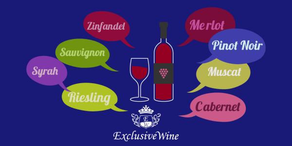 tipologie-vitigni-internazionali-cabernet-sauvignon-muscat-pinot-noir-chardonnay-syrah-portale-ricerca-cantine-enoteche-vini-exclusive-wine-1250x616