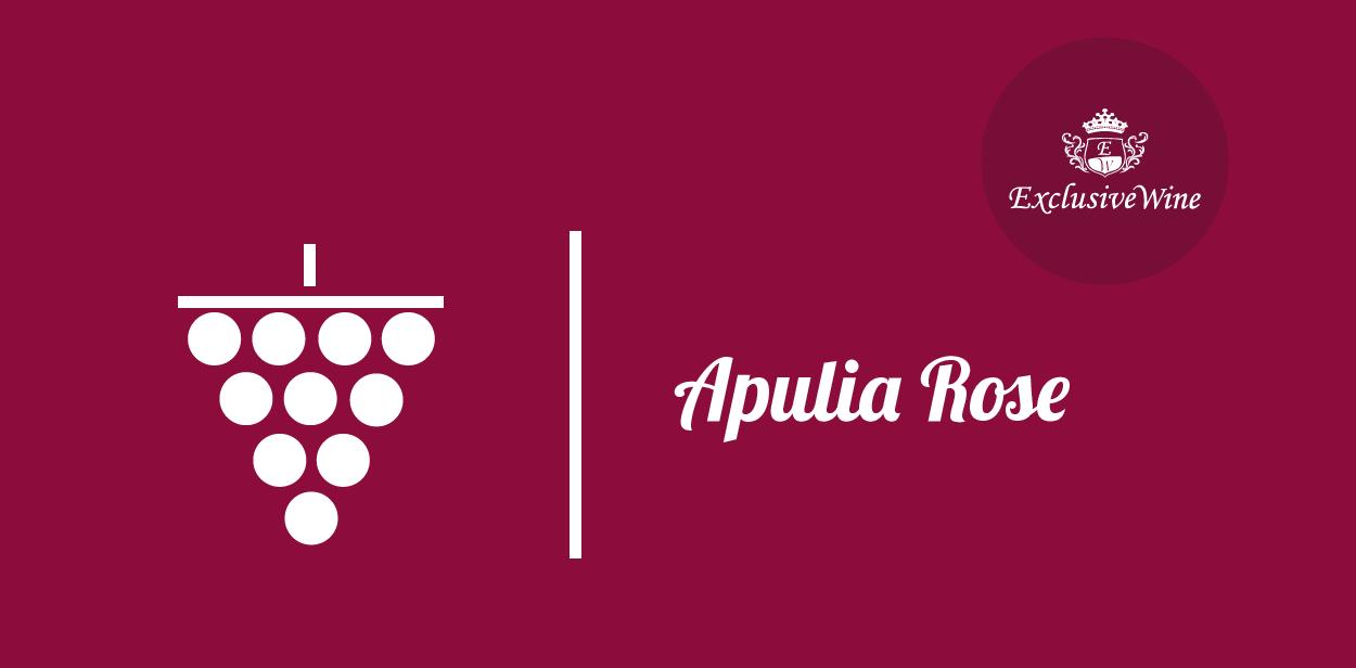 uva-apulia-rose-tipologie-uve-caratteristiche-grappolo-vitigno-portale-ricerca-cantine-vini-enoteche-exclusive-wine-1250x616