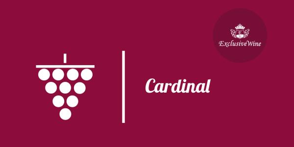 uva-cardinal-tipologie-uve-caratteristiche-grappolo-vitigno-portale-ricerca-cantine-vini-enoteche-exclusive-wine-1250x616