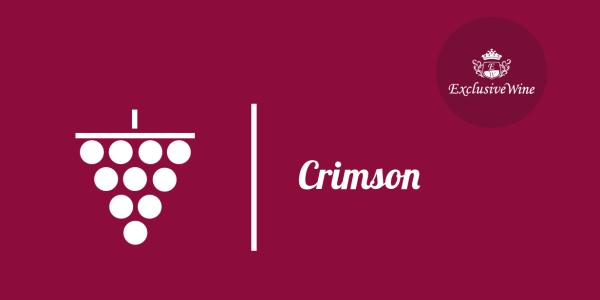 uva-crimson-tipologie-uve-caratteristiche-grappolo-vitigno-portale-ricerca-cantine-vini-enoteche-exclusive-wine-1250x616