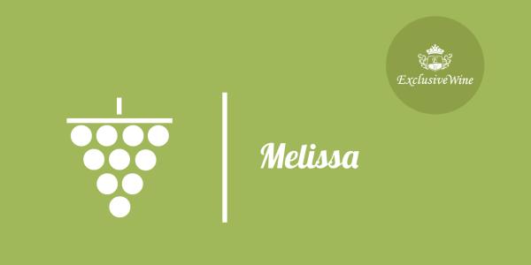 uva-melissa-tipologie-uve-caratteristiche-grappolo-vitigno-portale-ricerca-cantine-vini-enoteche-exclusive-wine-1250x616