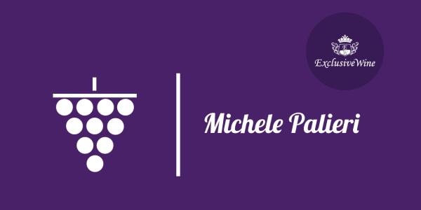 uva-michele-palieri-tipologie-uve-caratteristiche-grappolo-vitigno-portale-ricerca-cantine-vini-enoteche-exclusive-wine-1250x616