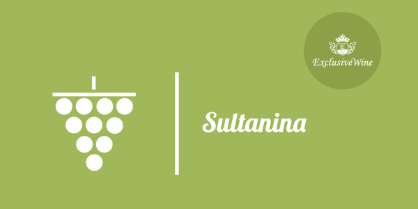 uva-sultanina-tipologie-uve-caratteristiche-grappolo-vitigno-portale-ricerca-cantine-vini-enoteche-exclusive-wine-1250x616